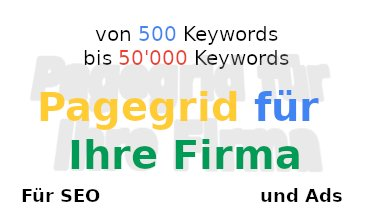 online-marketing-agentur mit Pagegrid